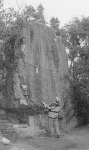 油杉の磐座